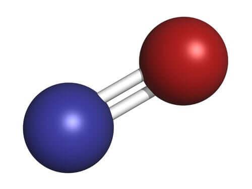 L'oxyde nitrique, ou le merveilleux neurotransmetteur gazeux