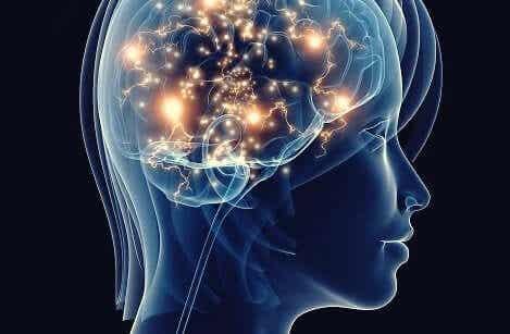 Une dépression non soignée a des effets neurodégénératifs