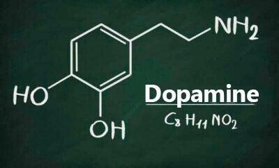 La dopamine et les monoamines