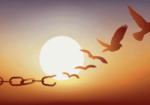 La liberté provisoire