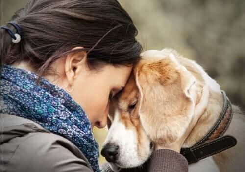 Les chiens peuvent aider les personnes atteintes du trouble borderline