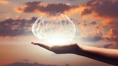 Une main tenant un cerveau