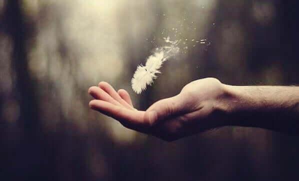 Une plume dans une main