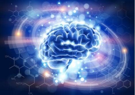 Un cerveau entouré de lumière représentant la psychologie holistique