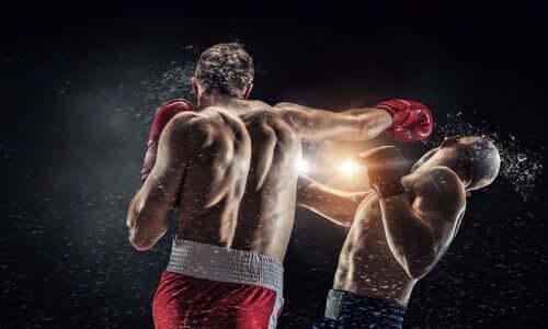 Les boxeurs et la démence pugilistique