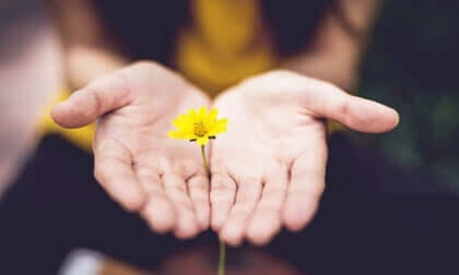 5 phrases pour commencer de nouvelles étapes avec espoir