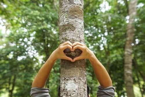 J'aime la protection de l'environnement