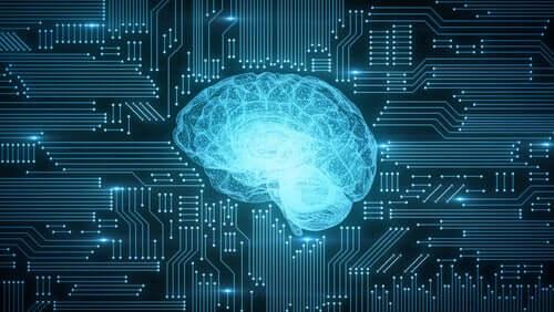 Un cerveau sur un circuit imprimé