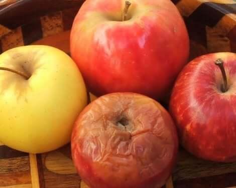 La théorie de la pomme pourrie : qu'est-ce que c'est ?