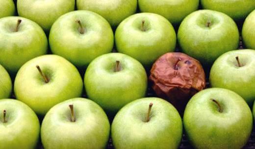 La théorie de la pomme pourrie : l'effet d'un mauvais collègue de travail