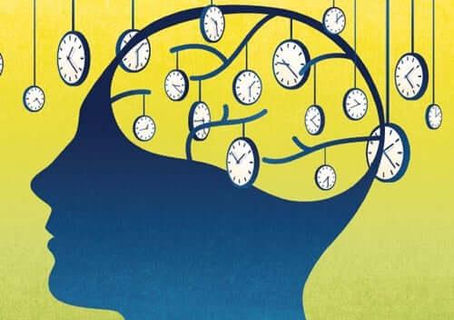 Les horloges du cerveau