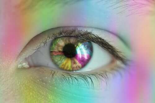 Vision de la couleur : comment perçoit-on les couleurs ?