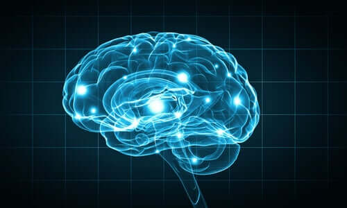 L'image d'un projet de cerveau artificiel