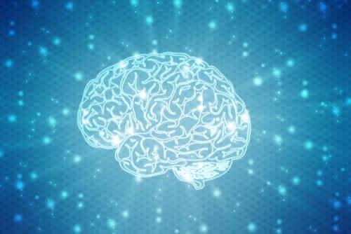 Un cerveau en pleine rééducation neuropsychologique