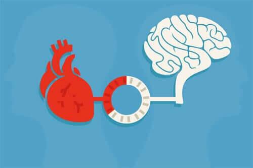 Raison et émotion : l'équilibre qui génère de bonnes décisions