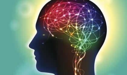 Les ganglions de la base et le cerveau