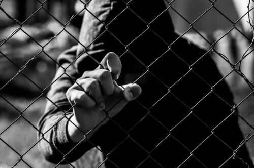 La délinquance et la criminologie