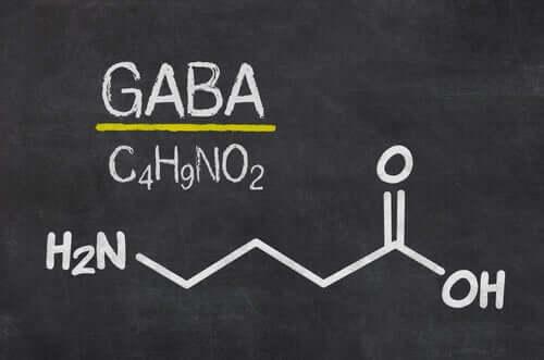 GABA et son lien avec la neurobiologie de la déception