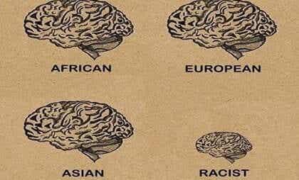 Comment fonctionne le cerveau d'une personne raciste ?