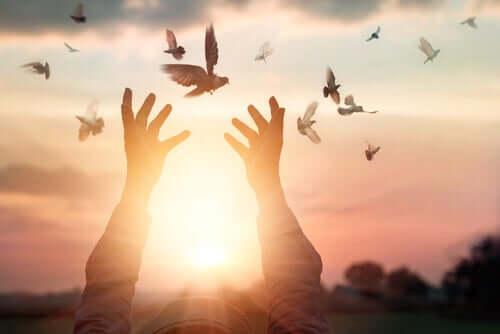 Des oiseaux qui s'envolent vers la lumière