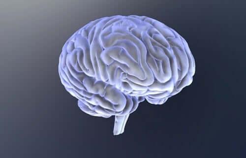 A quel problème cérébral est due l'akinétopsie ?