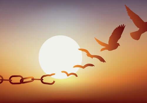 Erich Fromm et la liberté