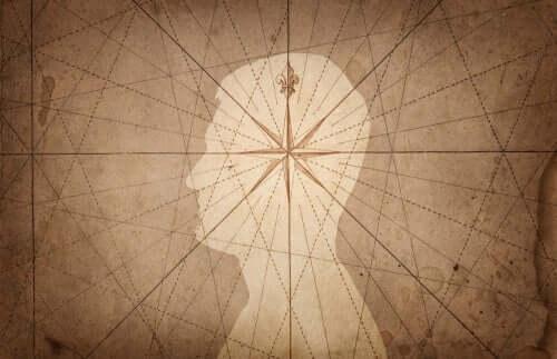 La neurobiologie de la sensibilité morale