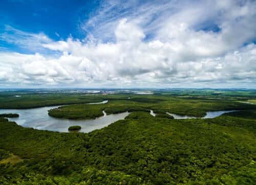 Claude Lévi-Strauss a mené des expéditions en Amazonie.