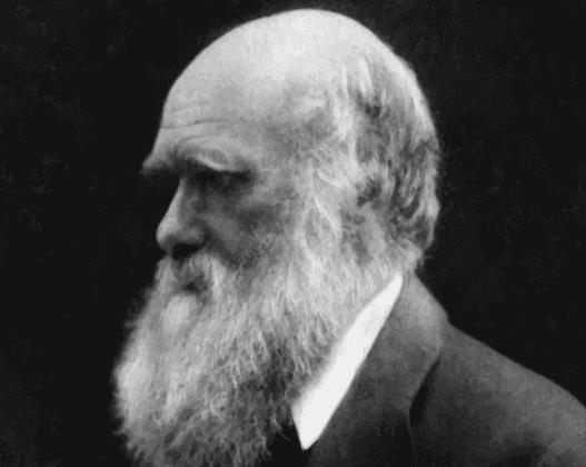 Charles Darwin, cousin de Francis Galton