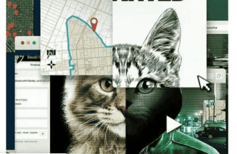 """""""Don't F*** with Cats"""" : l'obscurité du net"""