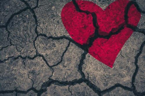 Cardiomyopathie de Takotsubo ou syndrome du cœur brisé : le stress qui fait mal