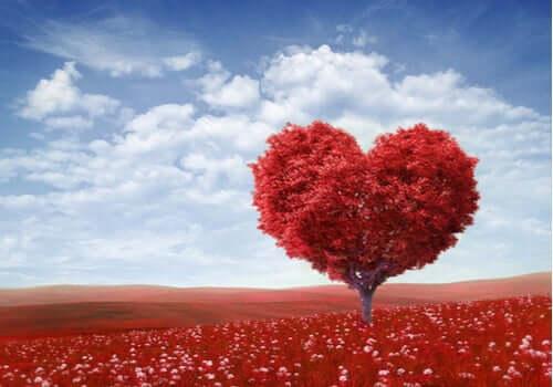 Saint Valentin, biographie du saint des amoureux
