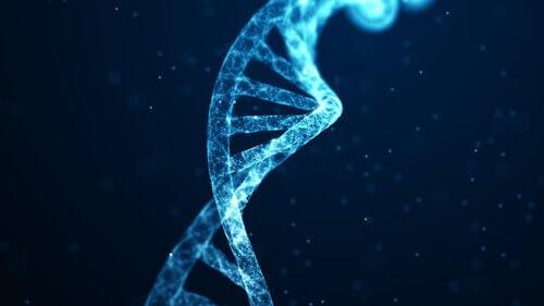 Susan Lee Smalley et l'étude du lien entre méditation et gènes