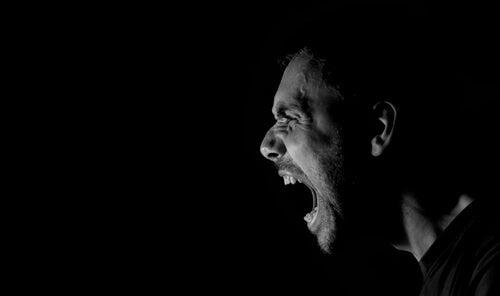 La neurobiologie de l'agression impulsive
