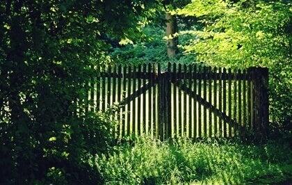 """Le """"ça suffit"""" matérialisé par une barrière en bois"""