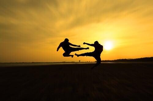 Sun Tzu et les arts martiaux