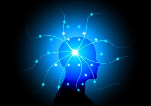 Quels sont les troubles de la psychopathologie de la conscience ?