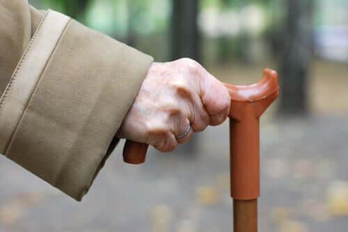 Cane-Fu : le nouvel art martial pour les personnes âgées