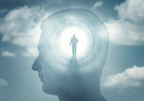 La psychopathologie de la conscience