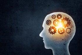 Que gagnons-nous en entraînant notre mémoire ?