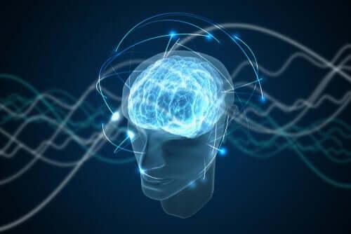 La fascinante théorie de la conscience quantique