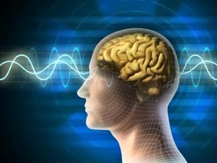 Des ondes cérébrales passant dans un cerveau.
