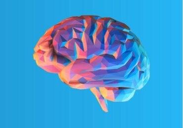 Théorie modulaire de l'esprit