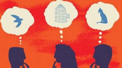 Les effets du cerveau social dans la compréhension des autres.