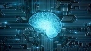 Voici comment la numérisation affecte le cerveau