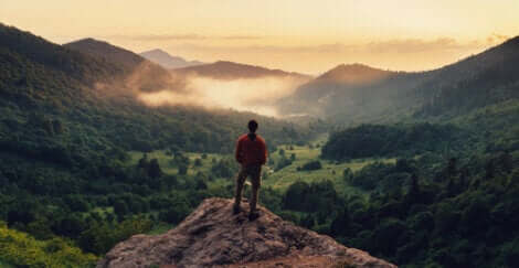 Un homme au sommet d'une montagne.