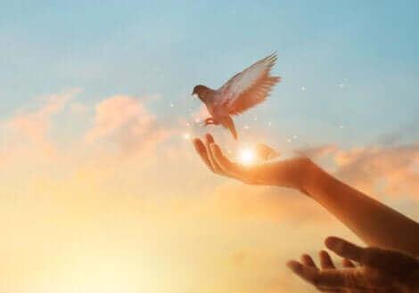 La colombe symbolise le fait de garder espoir.