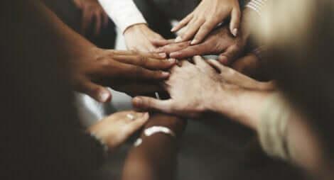 Les mains unies de personnes partageant la cohabitation.