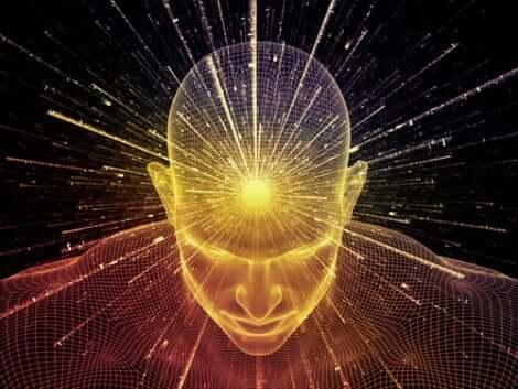 Que la dit la science sur l'âme ?