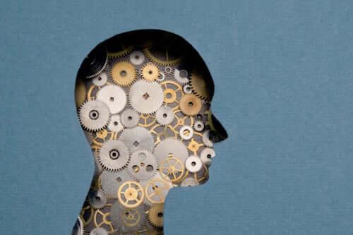 La neuropsychologie médico-légale